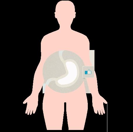icona-stomaco